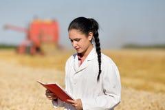 Agrônomo da mulher no campo de trigo imagem de stock royalty free