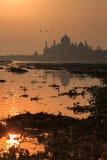 agra dawn taj mahal indu Zdjęcie Royalty Free