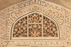 Agra fortu dziejowa architektura wyszczególnia Agra India Zdjęcie Royalty Free