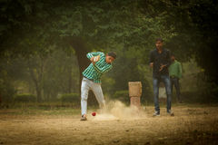 AGRA, INDIA - JAN 09: Young boys playing cricket in a parc of Ag Stock Image