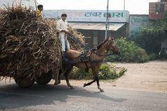 Two Indian boys ride a horse with loaded cart on a road Royalty Free Stock Images