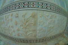 Agra Indien - September 20, 2017: Stäng sig upp av de härliga detaljerna av väggarna inom av Taj Mahal, i staden av Arkivbild