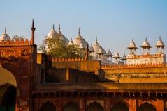 agra indu Agra Fort Fotografia Royalty Free