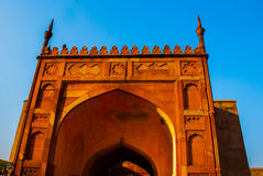 agra indu Brama Agra fort Fotografia Royalty Free
