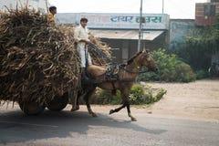 Dos muchachos indios montan un caballo con el carro cargado en un camino Imágenes de archivo libres de regalías