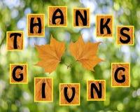 Agradecimentos que dão no fundo do blurr Imagens de Stock Royalty Free