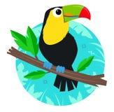 Agrafe-art de toucan Images libres de droits