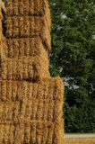 Agrar 228. A staple of straw bales Royalty Free Stock Photo