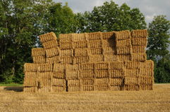 Agrar 230. A staple of straw bales at a field Stock Photos