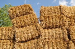 Agrar 232. A staple of straw bales at a field Stock Image