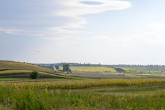 Agrarian open spaces. Of Ukraine royalty free stock photos