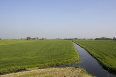 Agrarian / rural landscape in NL. Typical Dutch scenery, agrarian / rural area. Farmland and a small canal Royalty Free Stock Photos