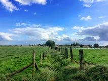 Agraric pola Zdjęcia Royalty Free