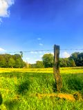 Agraric pola Zdjęcia Stock