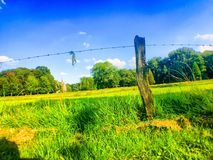 Agraric pola Zdjęcie Royalty Free