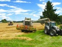 agrarna polityka Obrazy Royalty Free