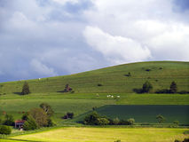 agrarny krajobrazu Obraz Royalty Free