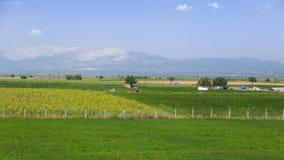 agrarny krajobrazu Obrazy Stock