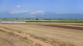 agrarny krajobrazu Zdjęcia Royalty Free