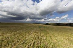 Agrarny pole Fotografia Stock