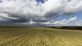 Agrarny pole Zdjęcie Royalty Free
