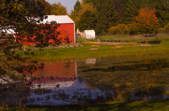 Agrarny spokój Zdjęcie Royalty Free