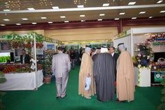 Agrarny tydzień w Irak fotografia royalty free