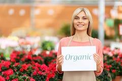 Agreeable florist holding folder Royalty Free Stock Photos