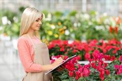 Agreeable florist holding folder Royalty Free Stock Photography