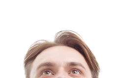 Agreeable guy looking up Royalty Free Stock Images