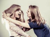 Agressieve gekke vrouwen die elkaar bestrijden Stock Afbeeldingen