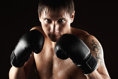 Agressive boxer Royalty Free Stock Images