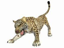 Agressive Jaguar. 3 dimensional model, computer generated image Royalty Free Stock Images