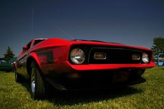 Agressive Red Mustang Royalty Free Stock Image