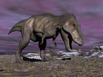 Tyrannosaurus shouting - 3D render Royalty Free Stock Photos