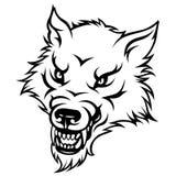 Agressive wolf Royalty Free Stock Photo