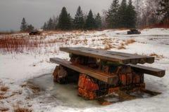 Agrest Spada stanu park na Minnestoa ` s Północnym brzeg Jeziorny przełożony w lecie Obraz Stock