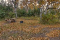 Agrest Spada stanu park w Minnestoa podczas jesieni na Północnym brzeg Jeziorny przełożony Zdjęcie Royalty Free