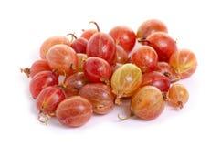 Agresta cukierki owoc Obraz Stock