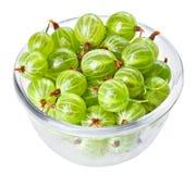 Agrestowe owoc w przejrzystym szkle Zdjęcia Stock