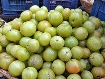 Agrestowe owoc owoc w rynku dla sprzedaży Że dzwoniliśmy Indianina Amla fotografia royalty free