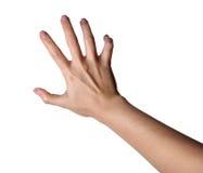 Agresywna żeńska ręka odizolowywająca na białym tle Fotografia Royalty Free