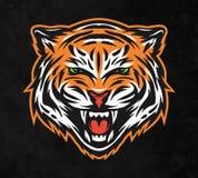 Agresywna tygrysia twarz Na ciemnym tle Zdjęcie Stock