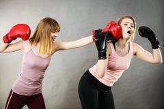 Agresywne kobiety walczy boksować z kobietą Obrazy Royalty Free