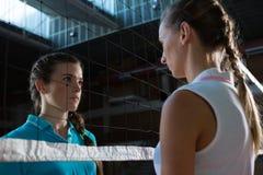 Agresywni żeńscy siatkówka gracze patrzeje przez sieci Zdjęcia Royalty Free