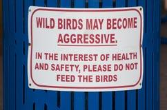 agresywni ptaki karmią nie szyldowego dziki Zdjęcie Royalty Free
