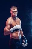 Agresywny bez koszuli bokser na popielatym tle Obrazy Royalty Free