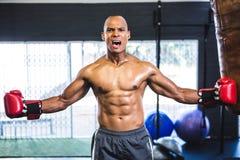 Agresywny bez koszuli bokser w gym Obrazy Royalty Free
