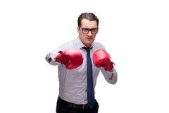 Agresywny biznesmen z bokserskimi rękawiczkami odizolowywać na bielu Obraz Stock