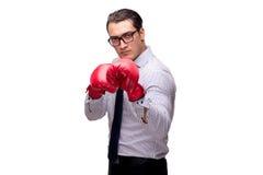 Agresywny biznesmen z bokserskimi rękawiczkami odizolowywać na bielu Zdjęcie Royalty Free